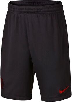 Nike PSDry Strike short Jongens Zwart