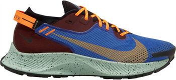 Nike Pegasus 2 Gore-Tex trailschoenen Heren