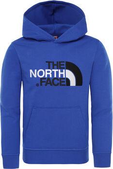 The North Face Drew Peak hoodie Jongens Blauw