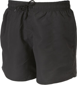 etirel Holland beachshort Heren Grijs