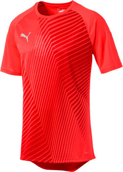 Puma FTBLNXT Graphic Core shirt Heren Rood