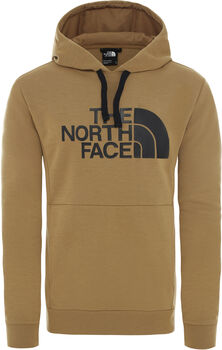 The North Face Berard hoodie Heren Groen