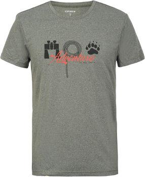 Icepeak Bayport t-shirt Heren Groen