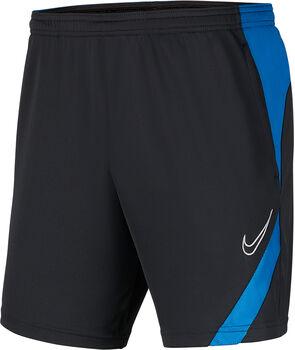 Nike Dri-FIT Academy broek Heren Grijs