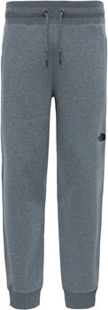The North Face NSE broek Heren Grijs