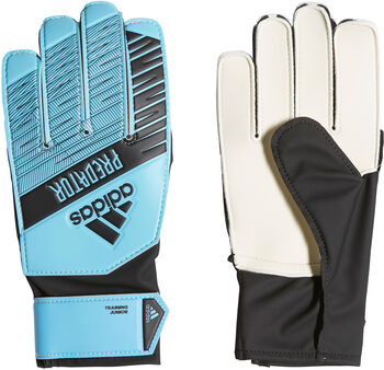 ADIDAS Predator Training keepershandschoenen Blauw