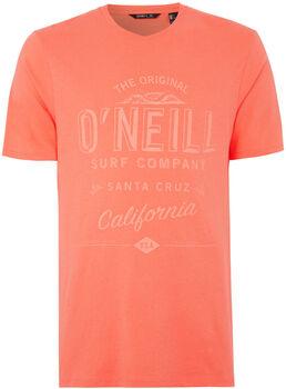 O'Neill Muir t-shirt Heren Roze
