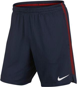 Nike Dry Paris Saint-Germain Squad short  Heren Blauw