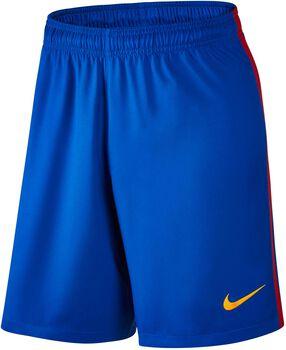 Nike FC Barcelona wedstrijdshort 2016/2017 Heren Blauw