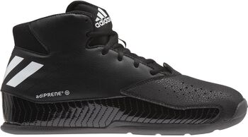 Adidas Next Level Speed 5 basketbalschoenen Heren Zwart