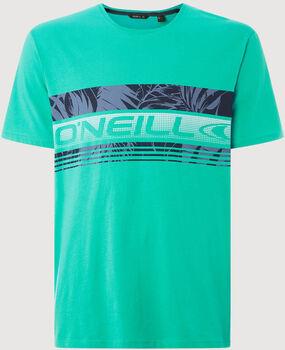 O'Neill Puaku t-shirt Heren Blauw