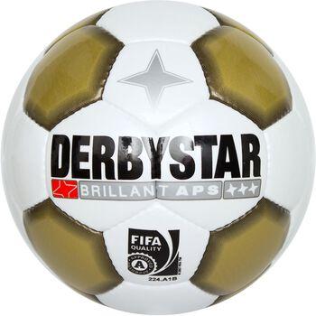 Derbystar Brillant Gold Multicolor