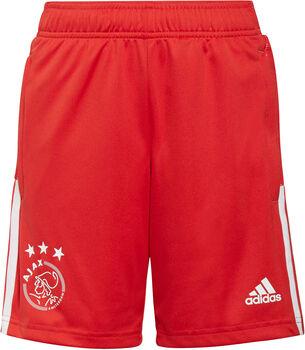 adidas Ajax Tiro kids trainingsshort 21/22 Jongens Rood