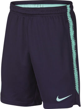 Nike FC Barcelona Dry Squad Drill jr short Heren Paars