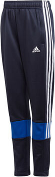 adidas Must Haves 3-Stripes AEROREADY Broek Jongens Blauw