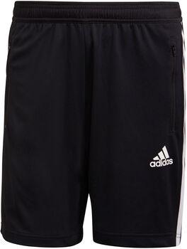 adidas Primeblue Designed To Move Sport 3-Stripes Short Heren Zwart