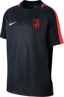 Dry Neymar jr shirt