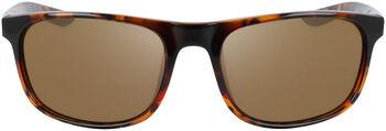 Nike Endure zonnebril Bruin