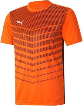 Puma ftblPLAY Graphic shirt Heren Oranje