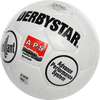 Derbystar Brillant