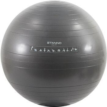 Stanno Yoga Ball Grijs