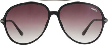 Sinner Montcalm zonnebril Heren Zwart