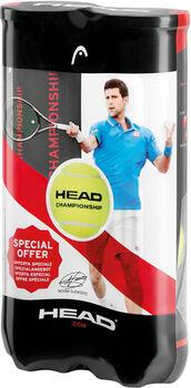 Head Championship 2x4 tennisballen Geel