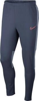 Nike Dry Academy broek Heren Blauw