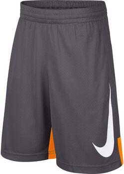 Nike Dry short Jongens Grijs