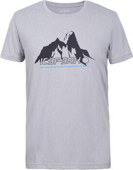 Icepeak Bayport t-shirt Heren Grijs