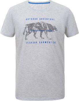 Icepeak Baxter shirt Heren Wit