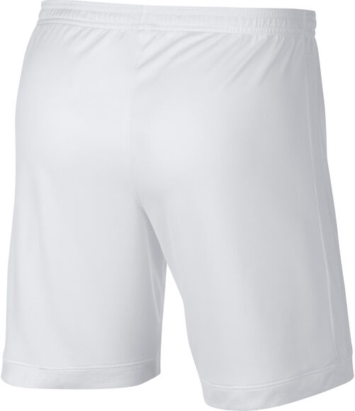 Dri-FIT Academy short