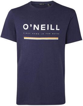 O'Neill Arrowhead t-shirt Heren Blauw