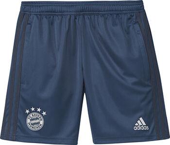 ADIDAS FC Bayern München jr training short 2019-2020 Jongens Blauw