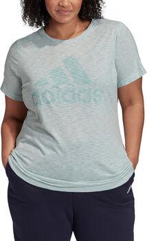adidas Winners Short Sleeve T-shirt (Grote Maat) Dames Groen
