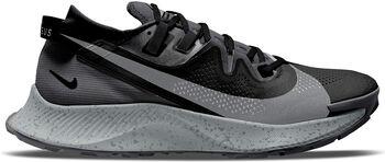 Nike Pegasus Trail 2 trailschoenen Heren