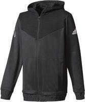 Yb Ace FZ hoodie