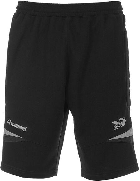 Swansea keeper short