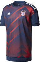 FC Bayern München Pre-match shirt 2017/2018