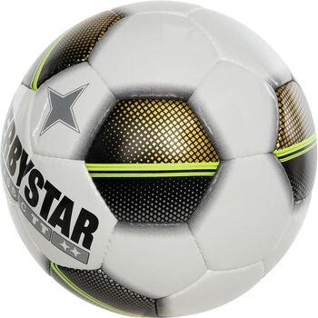 Derbystar Classic TT 5 voetbal Paars