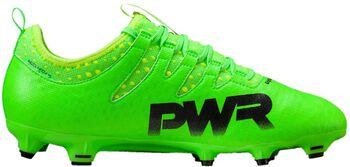 Puma evoPOWER Vigor 2 FG voetbalschoenen Groen