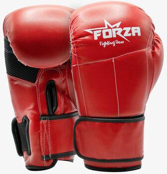 Forza Kunstleren Champion bokshandschoenen Heren Rood
