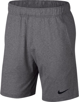 Nike Dri-FIT short Heren Grijs