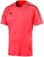 evo Training shirt