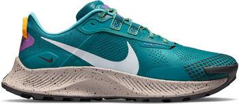 Nike Pegasus Trail 3 trailschoenen Heren Blauw
