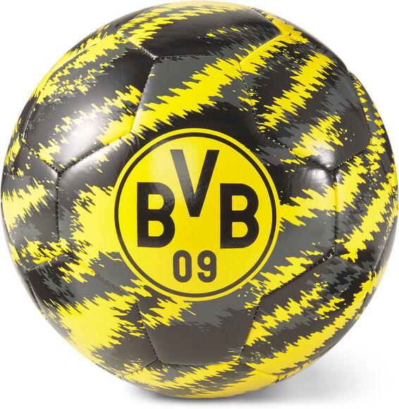 Borussia Dortmund voetbal
