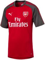 Arsenal FC training shirt