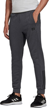 adidas Designed to Move Motion broek Heren Wit