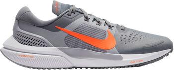 Nike Air Zoom Vomero 15 hardloopschoenen Heren Grijs