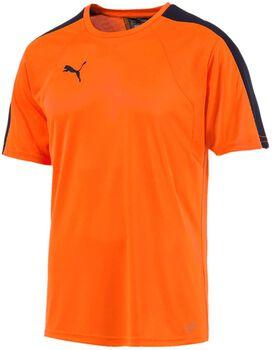 Puma Evotraining shirt Heren Oranje